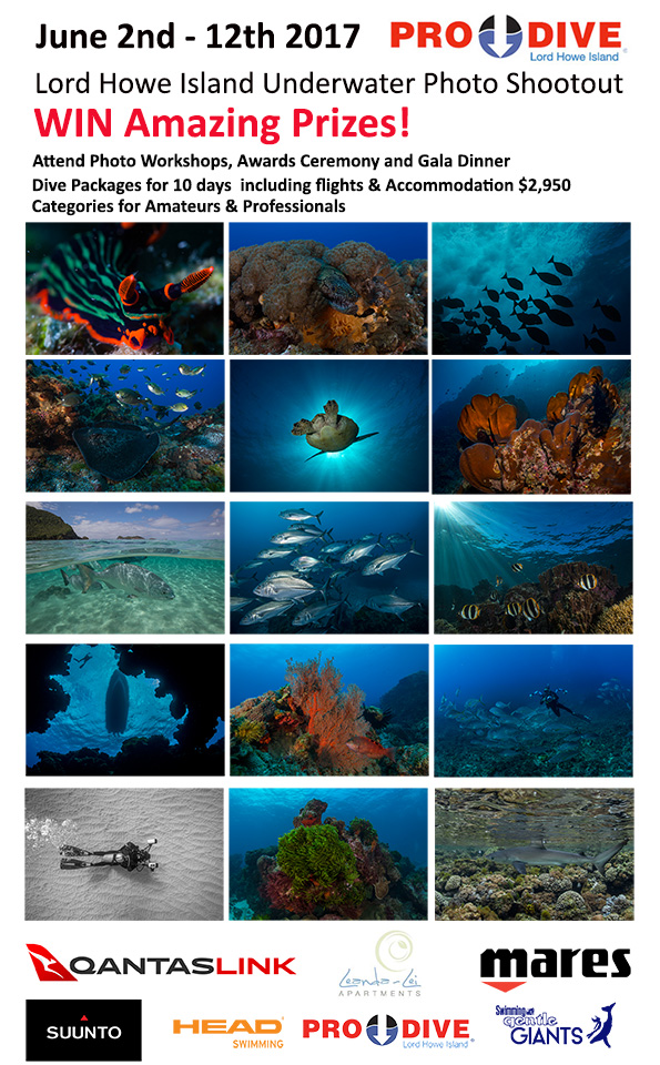 ProDive-Photoshootout2-Lord Howe Island