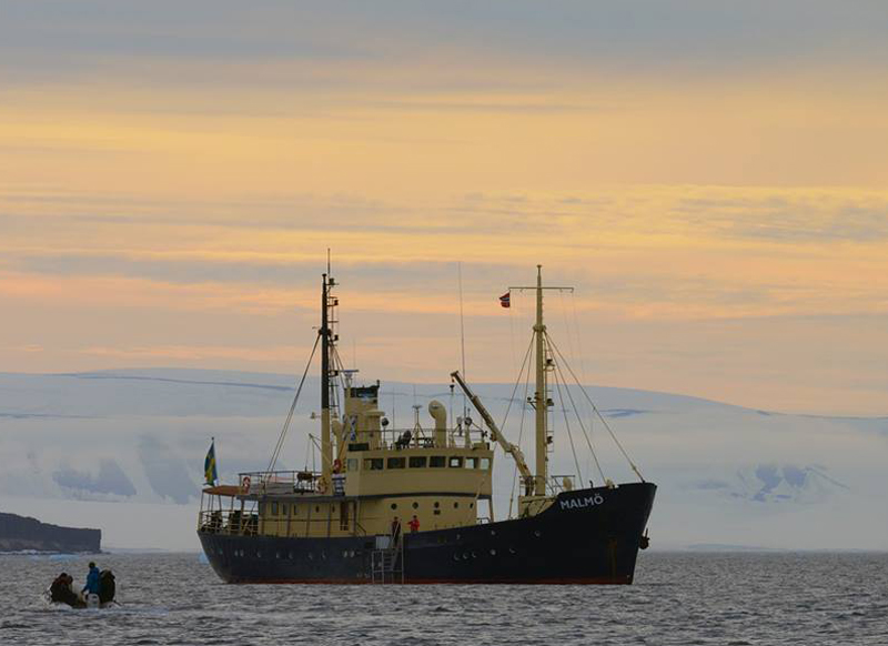 MV Malmo, expedition vessel to go snorkeling with orcas in Norway on tour with Scott Portelli
