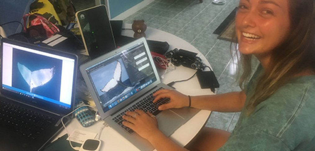 rolex scholar melanie brown working on the Tongan fluke collective
