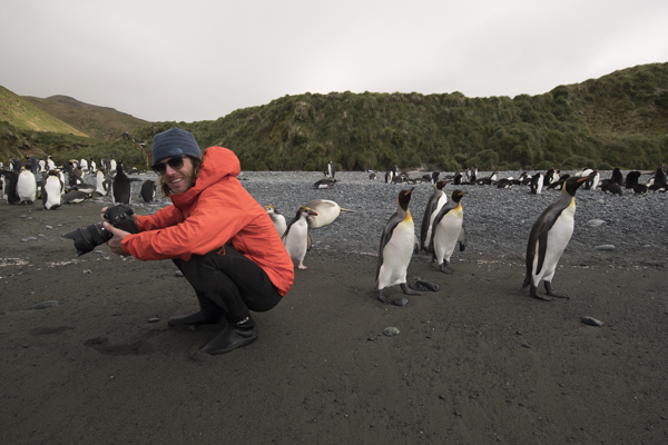 Matt Draper and penguins on subantarctic islands