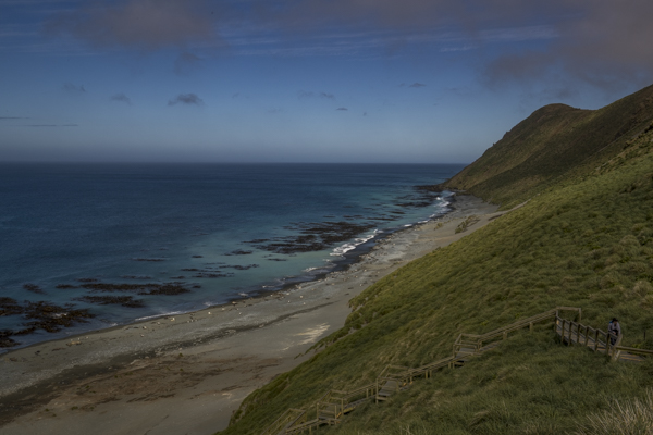 subantarctic islands