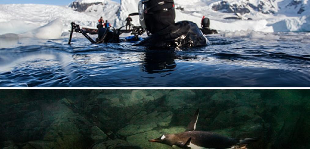 Poster-Antarctica-Tour-Page